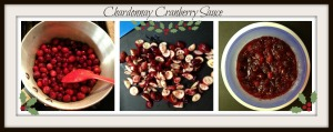 Cranberry Sauce Collage