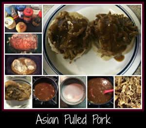 AsianPulledPork CP