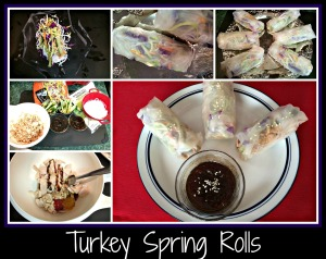 TurkeySpringRolls