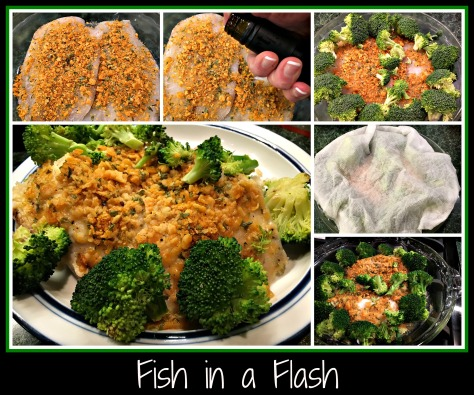fishinaflash